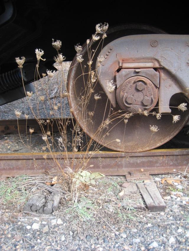 train 035